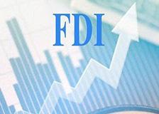 FDI1_mo